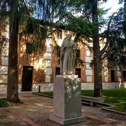 Estancia + Visita y entrada Colegio Mayor de San Ildefonso