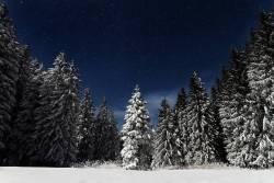 Raquetas de nieve nocturnas