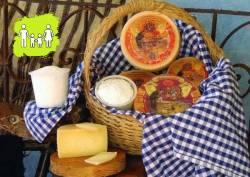 Inmersión en el mundo del queso